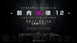 20170515_jyakuniku12